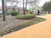 11 Park és játszótér Kispest Ötvenhatosok tere- 11.jpg